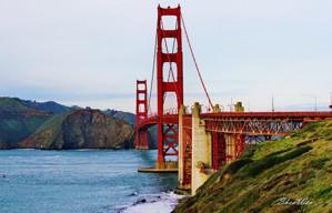 美国旧金山市金门大桥面面观【原创】
