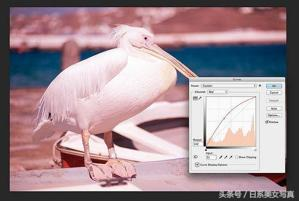 攝影修圖技巧!在後期製作中更好地理解色彩控制的實用技巧