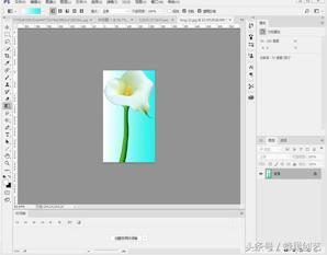 Photoshop cc 2017基本操作(九)