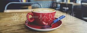 第2节|咖啡的使用指南